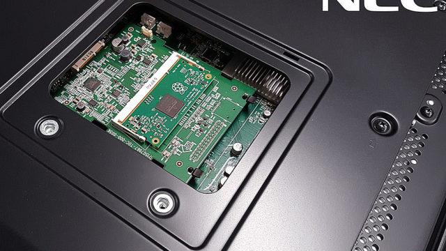 NEC_Raspberry.jpg