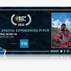 Un PiXii Festival de plus en plus international ! © DR