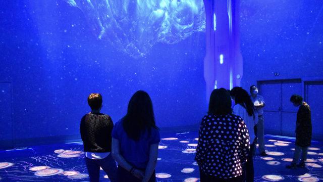 Bienvenue à Nausicaá, nouvelle salle immersive qui voit le jour avec les médias serveurs Modulo Pi © DR