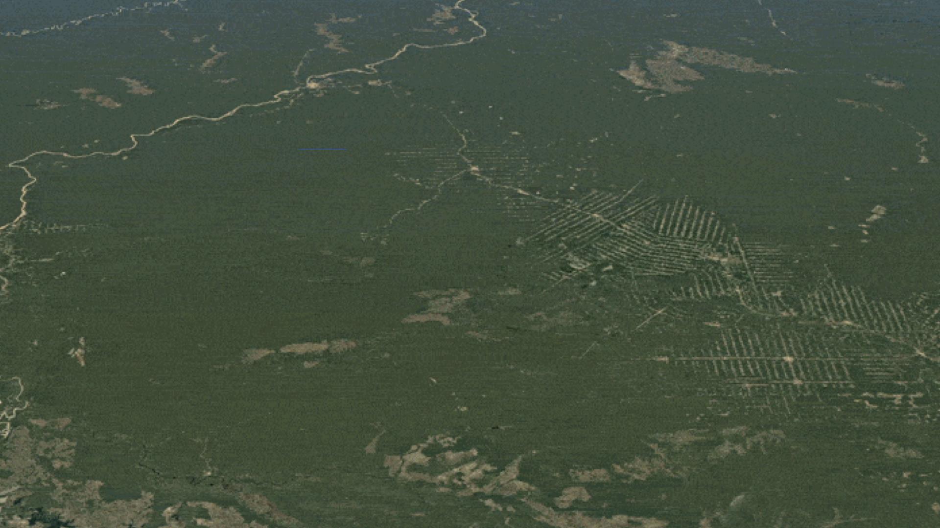 Observez la différence que le peuple Suruí a faite en protégeant la forêt amazonienne qu'il considère comme leur terre à Rondônia, Brésil © Google Earth